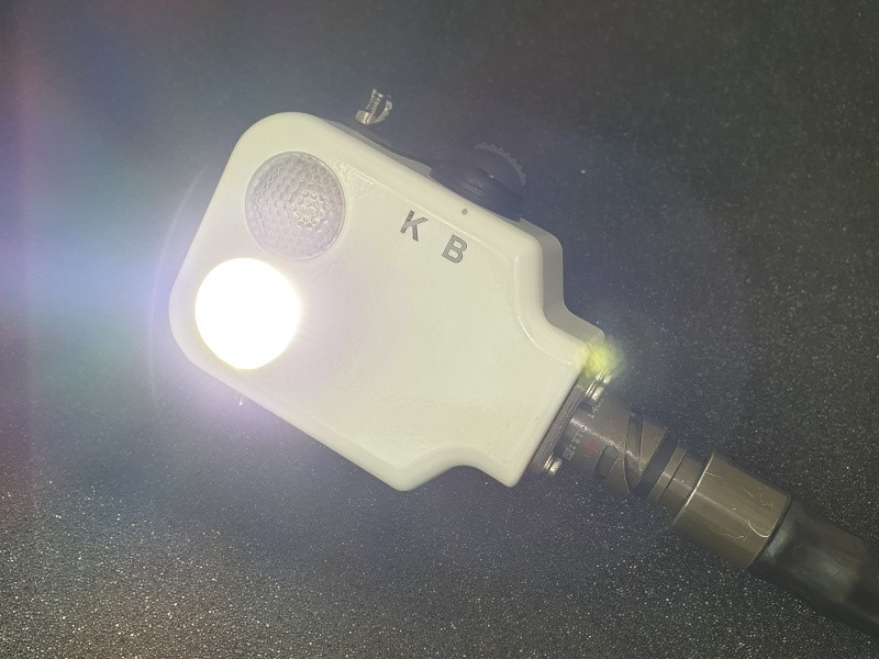 Cabled Exterior Lamp, SKL
